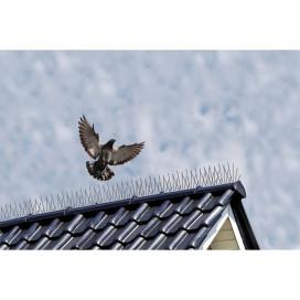 Nature 6 db madártüske 32 x 11 x 18 cm - utánvéttel vagy ingyenes szállítással