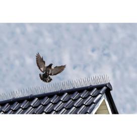 Nature 6060160 3 db madártüske 32 x 11 x 18 cm - utánvéttel vagy ingyenes szállítással